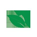 wpgroup_aziende_partern